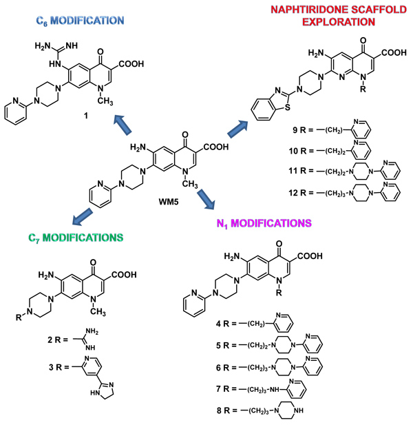 Design and Synthesis of WM5 Analogues as HIV-1 TAR RNA Binders